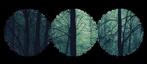 Divider F2U - Dark Forest