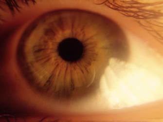 My Eye Macro ll