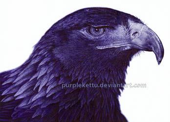 Eagle (ballpoint pen)