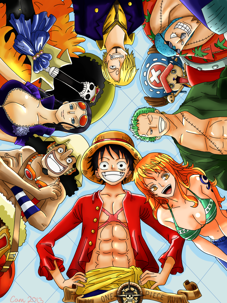 What are your thoughts on the One Piece Anime after the ...