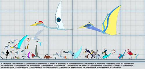 Sky Dinosaurs size