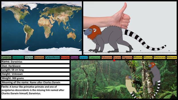 Prehistoric Profile Card: Darwinius