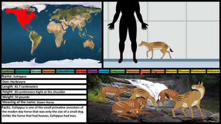 Prehistoric Profile Card: Eohippus