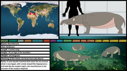 Prehistoric Profile Card: Moeritherium