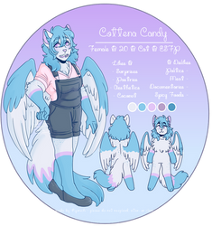 cottena candy reference 2019
