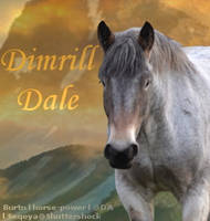 Dimrill Dale by DimrillDale-236344