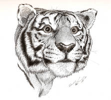 Ink Tiger by TheOnlySarah