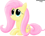 Young Fluttershy