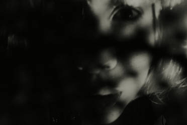 Film Noir by damsakura