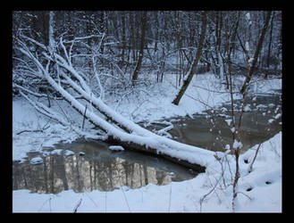 Winter 3.