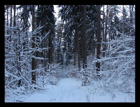 Winter 4.
