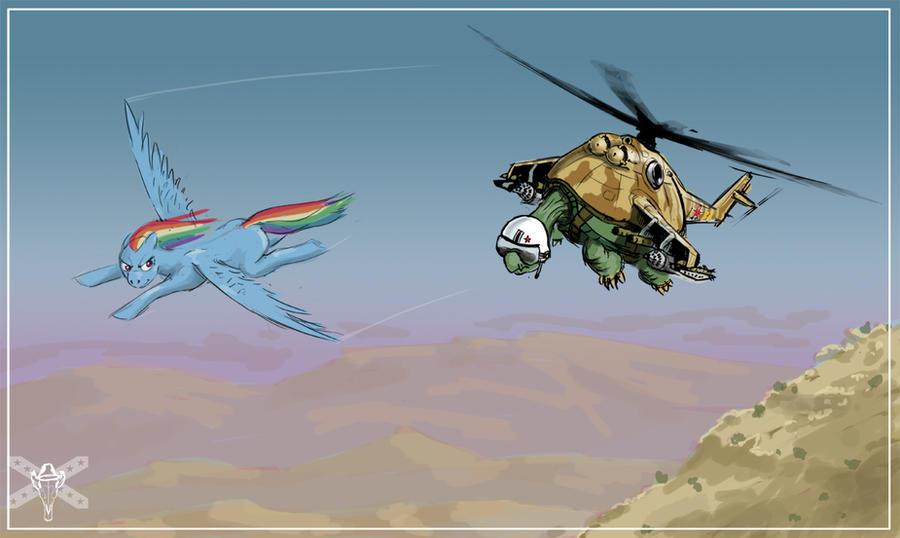 flying turtle wallpaper