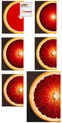 Orange: Step-by-step tutorial by XGingerWR