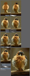 The little angry bird: step by step tutorial by XGingerWR
