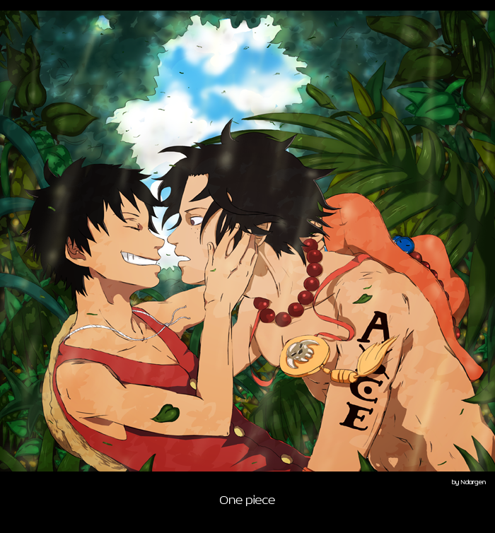 luffy and ace relationship problems