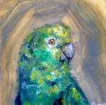 Paul The Parrot Oil Painting