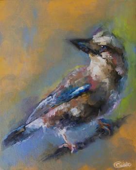 Barclay The Bird