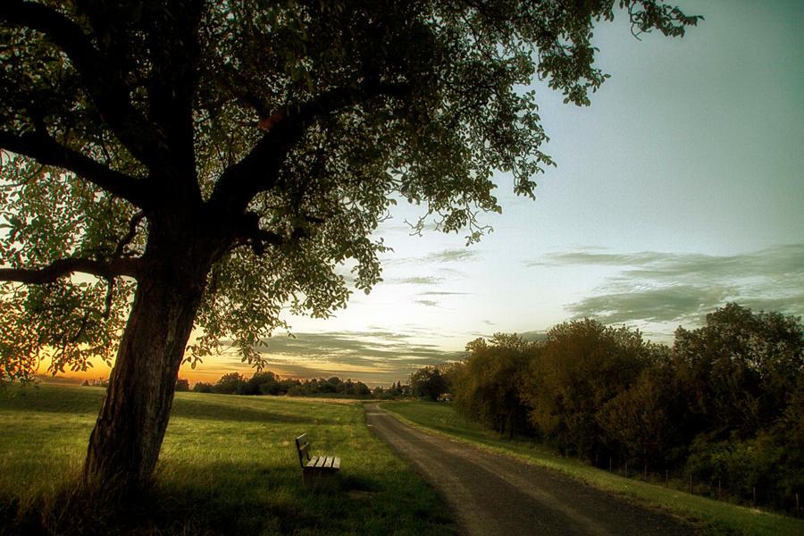 No espero by Anamartinez-Fotograf