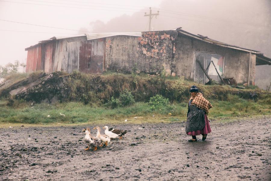 Coroico, Bolivia by Anamartinez-Fotograf