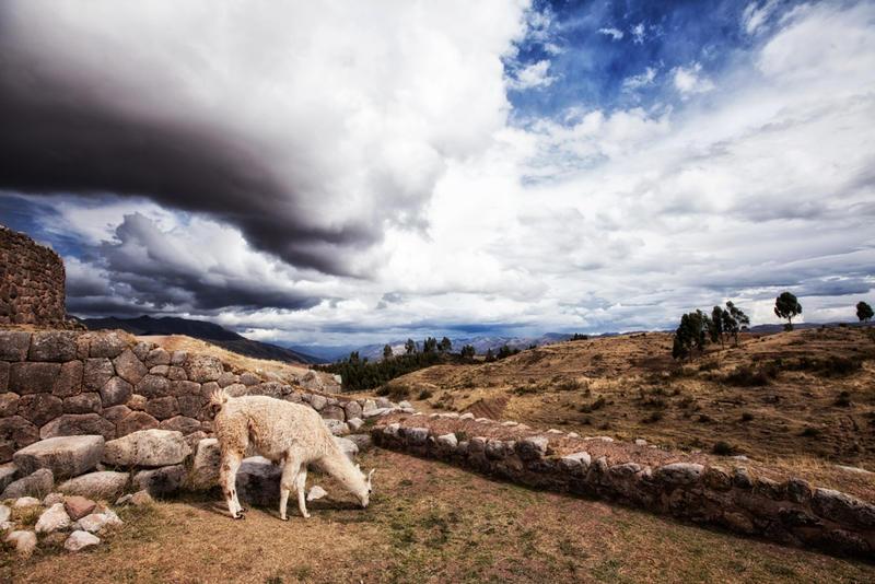 Cusco Valle Sagrado MacchuPicchu 151108 052 by Anamartinez-Fotograf