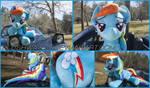 36 inch Life Size Rainbow Dash