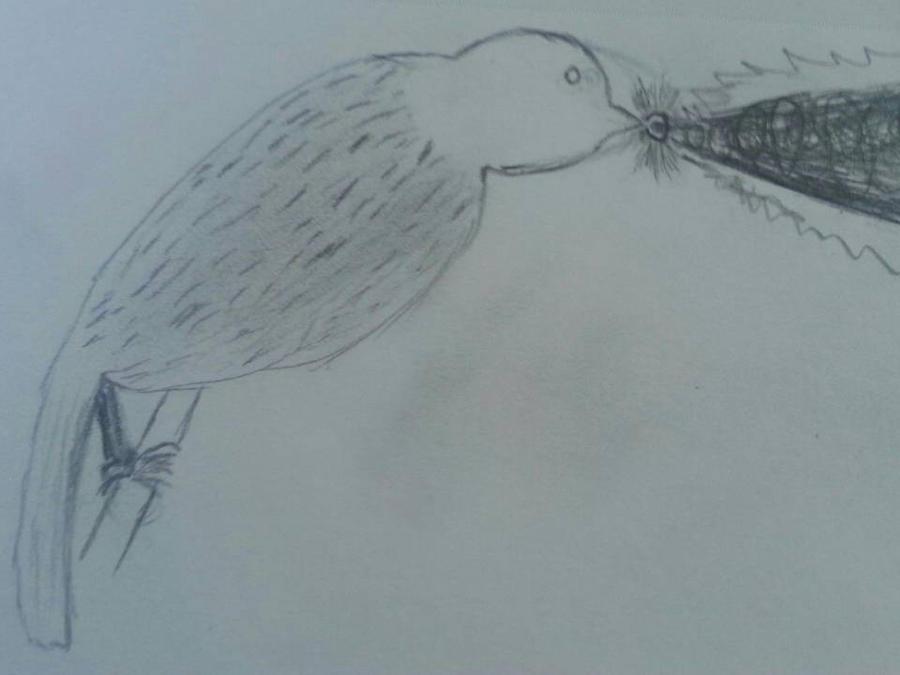 A Sh***y, Laz(er)y Bird Drawing by MediaDragon777