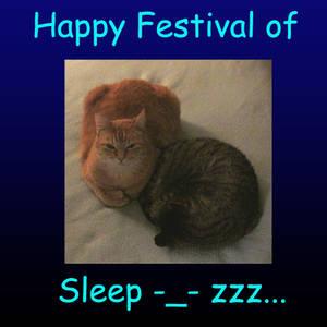 Happy Festival of Sleep - 2014