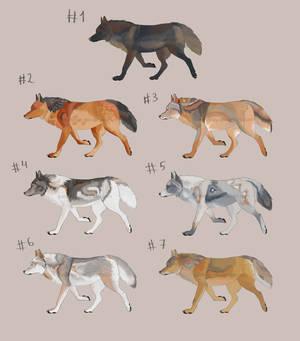 OTA - wolves - close
