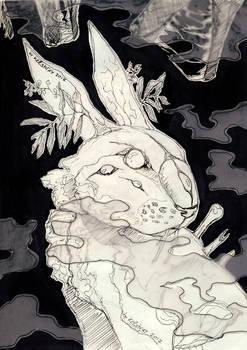 Darkmoss rabbit
