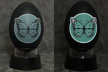 Carved Emu egg - Butterfly night light by eggdoodler
