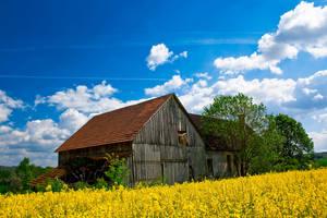 Blue Sky of Summer by Blickfanq