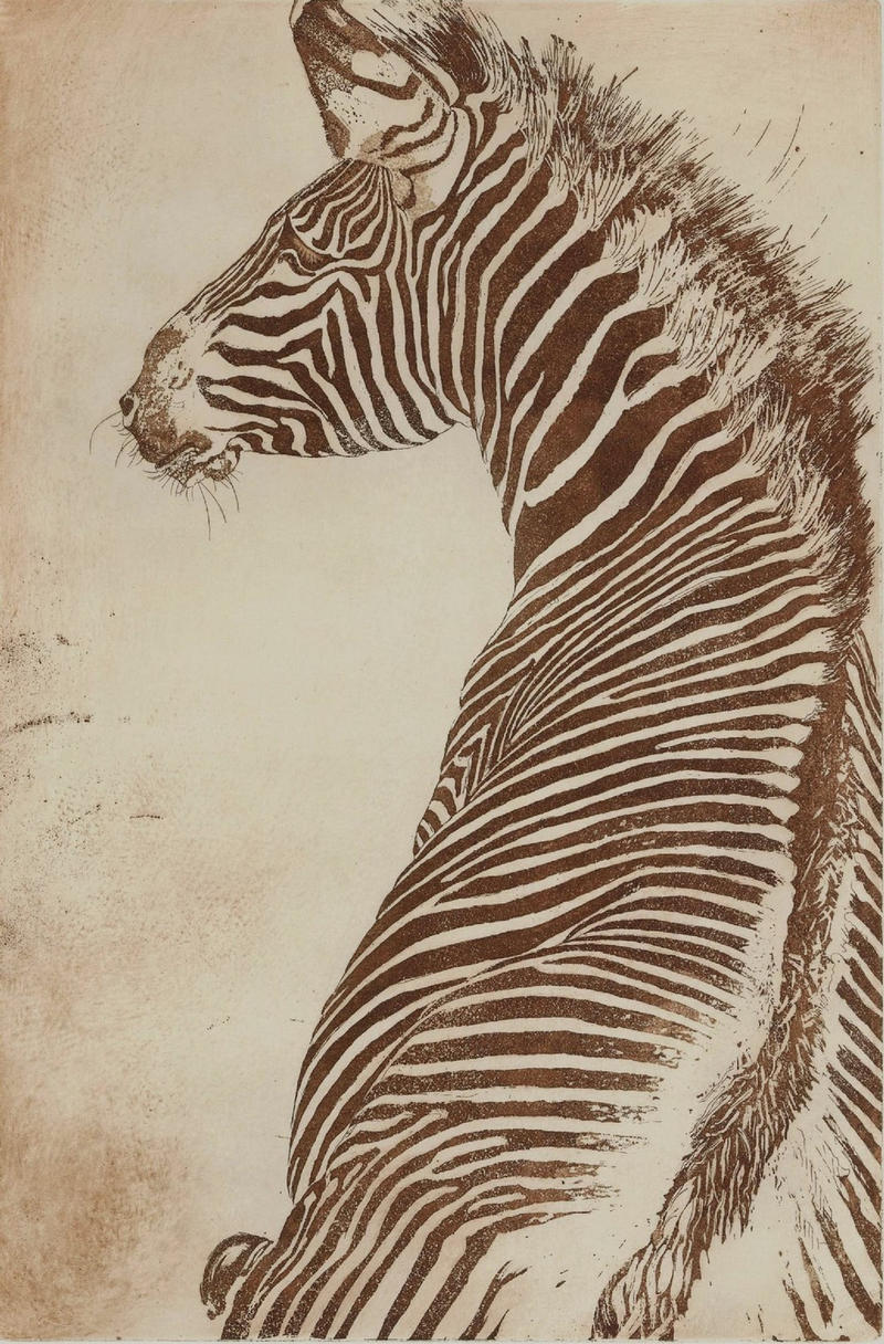[For Sale] Zebre