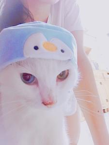 sagiii233's Profile Picture
