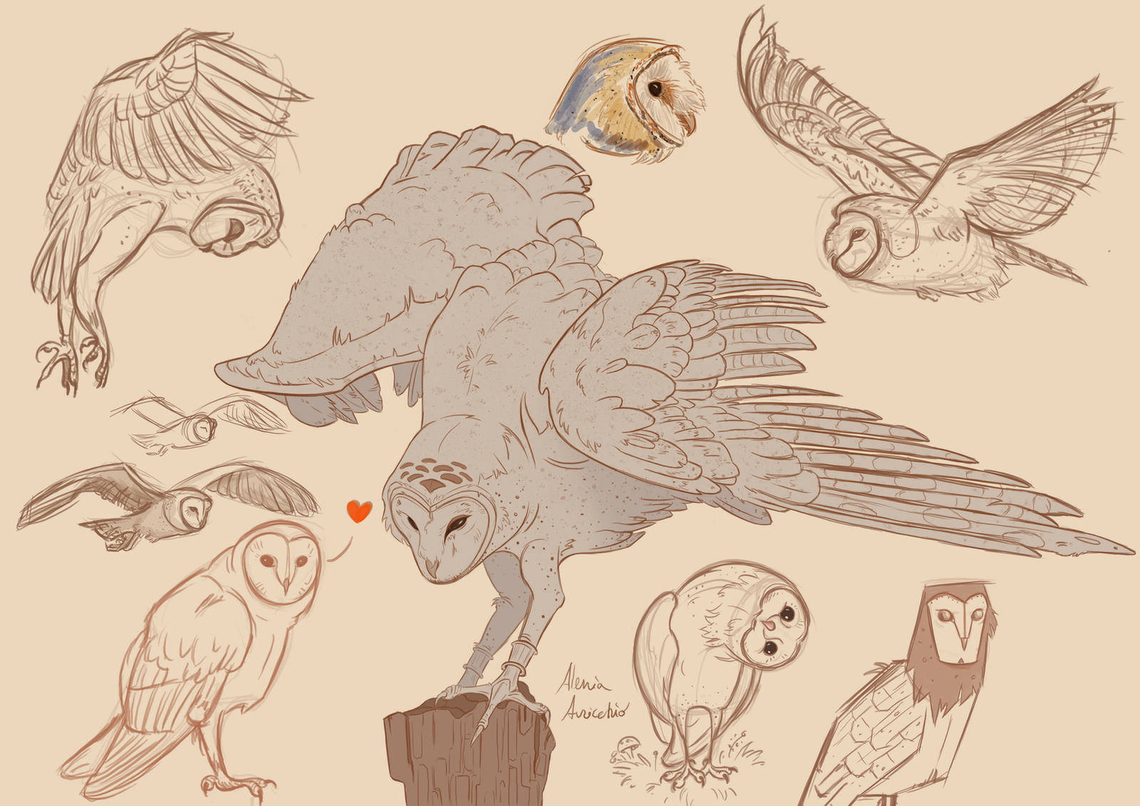 How to Draw a Simple Owl  Art Projects for Kids