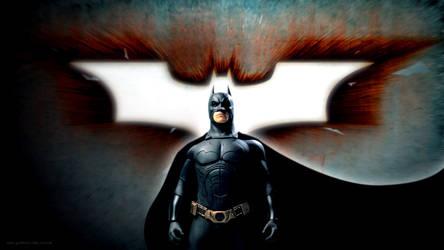 Batman - The Dark Knight Rises [1920x1080p]