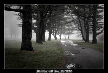 Trees by Hoursofdarkness