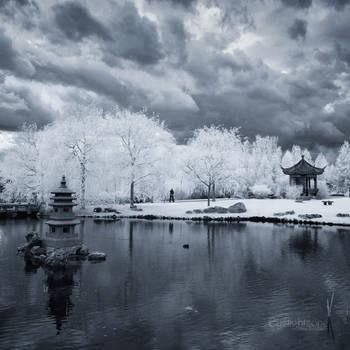 _ reflective _ IR by EYELIGHTZONE