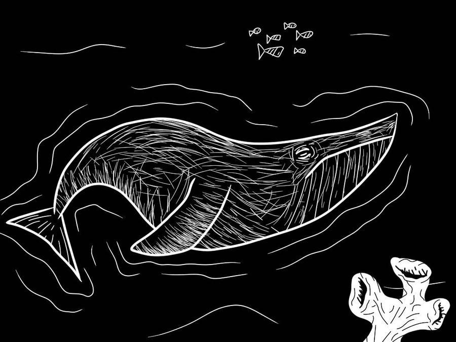 Inktober Day 12- Whale by Danbrofist