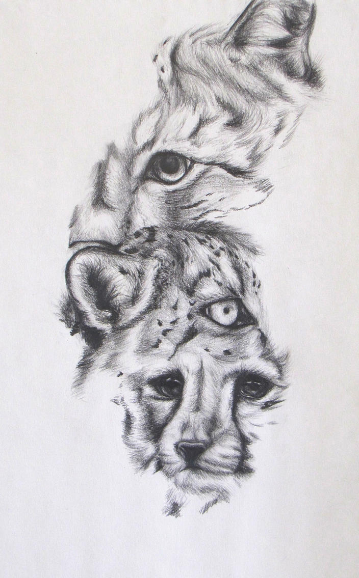 Wild Cat Portrait by SodaPutOnPasta
