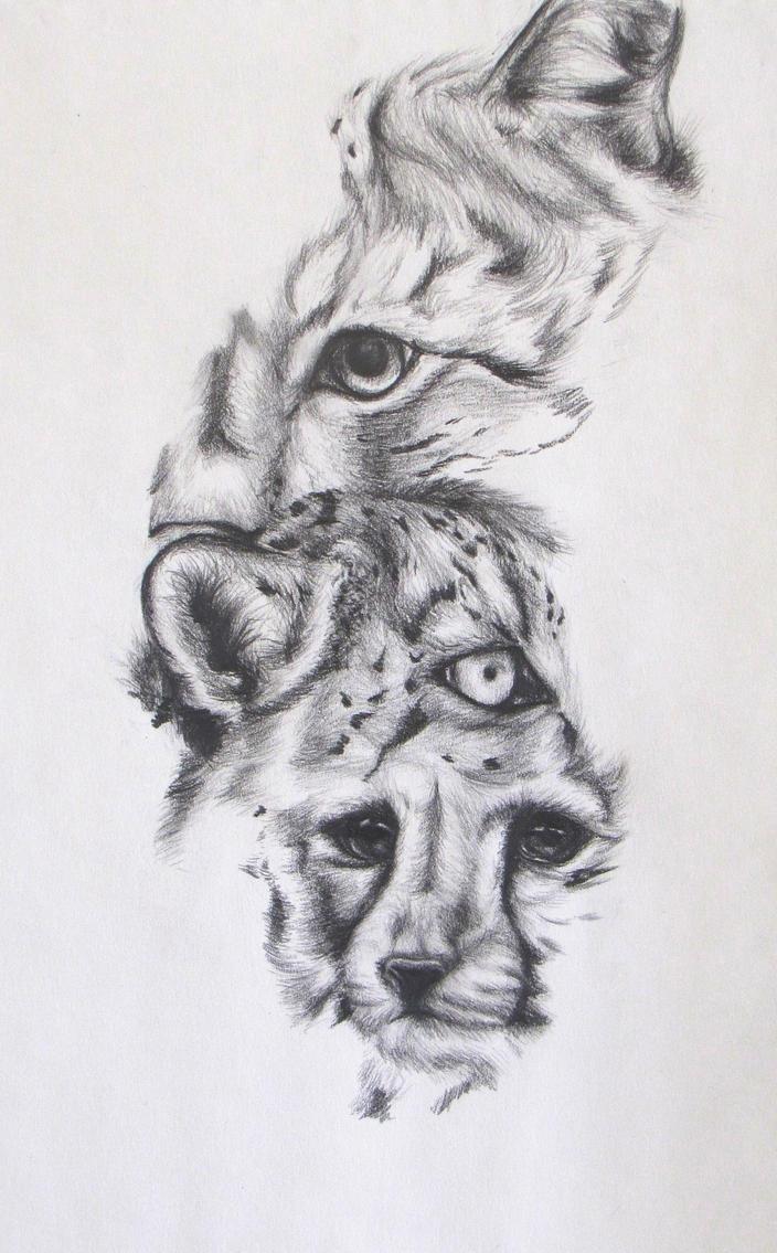 Wild Cat Portrait by SodaPutOnPasta