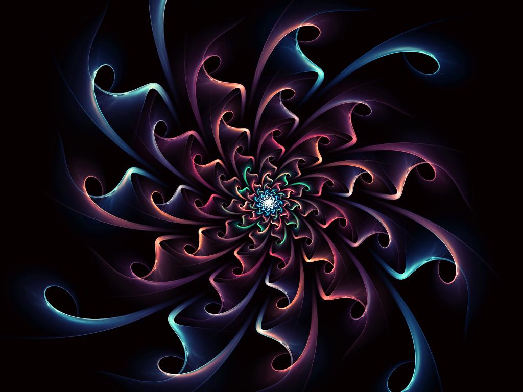 Night bloom by gravitymoves