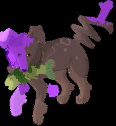 [G] Lilac