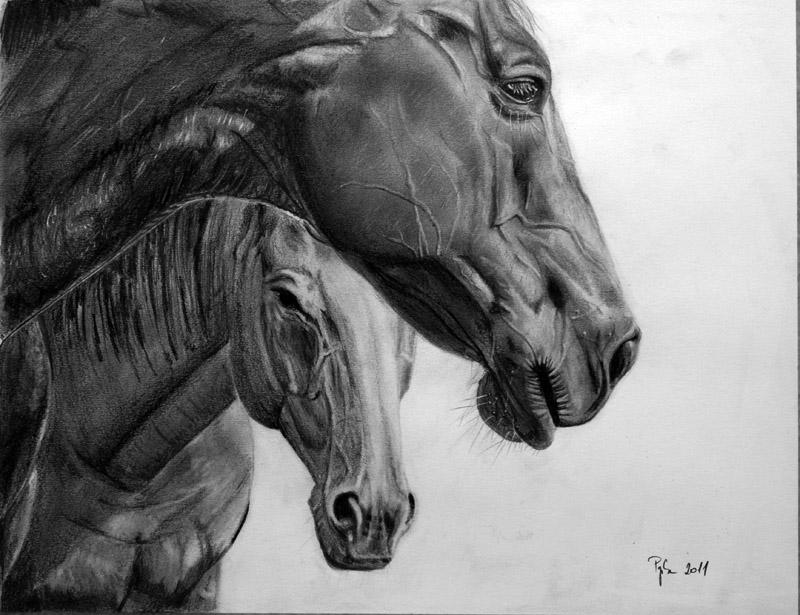 Thumbtak's horse by Papkalaci