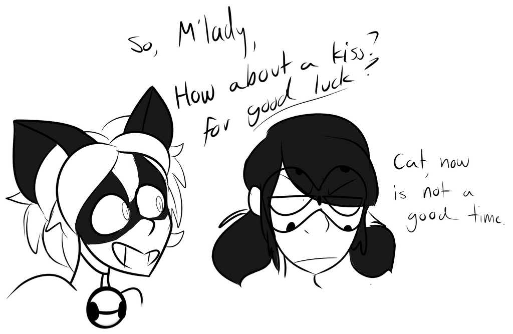 Ladybug and Chat by MonsterMonsoon