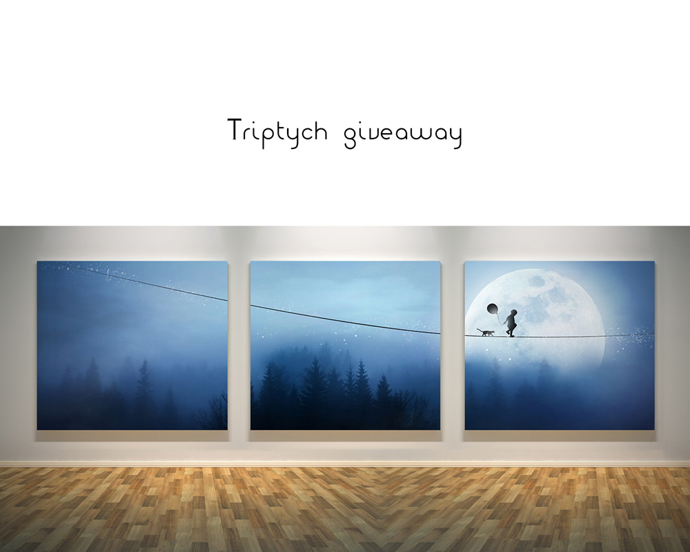 Canvas Giveaway by DianaGrigore