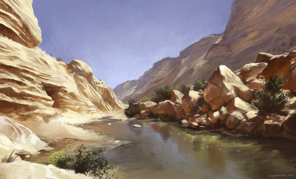 Canyon in the desert