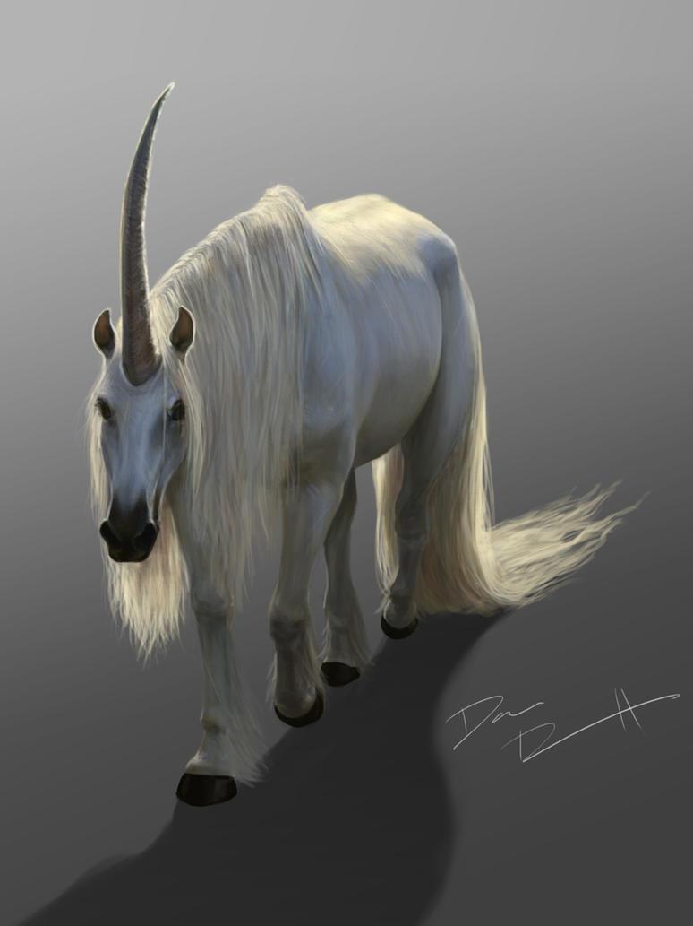 Unicorn by DanRobArt