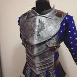 Grey Warden Warror WIP