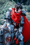 Warrior Hawke cosplay