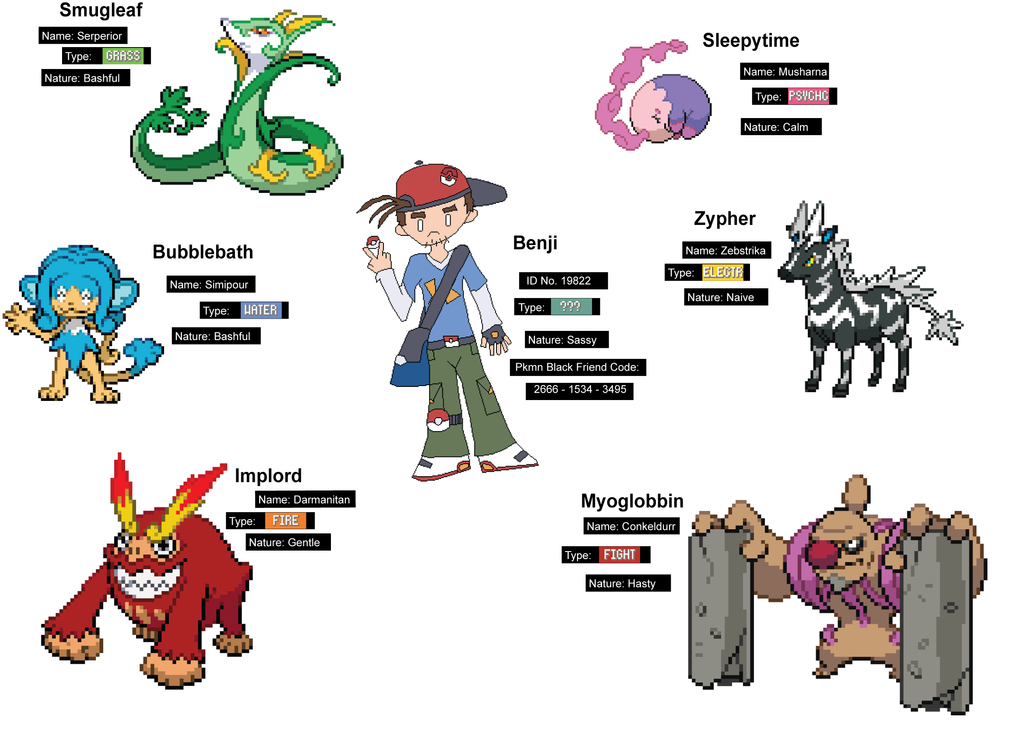 Team Build Types Pokemon